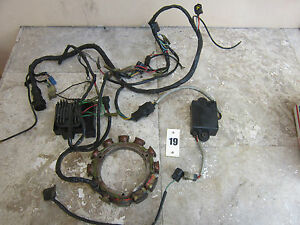s l300 yamaha outboard 2 stroke engine wiring harness stator module  at eliteediting.co