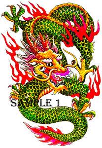 Chinese Art Painting Dragon