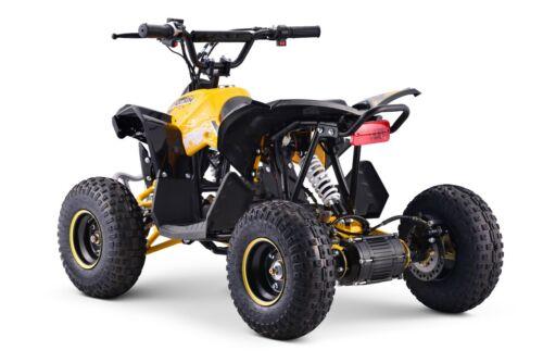 ✅Elektro Quad 1200 Watt Kinderquad Miniquad 48V Atv-Elektroquad bis 100 kg✅