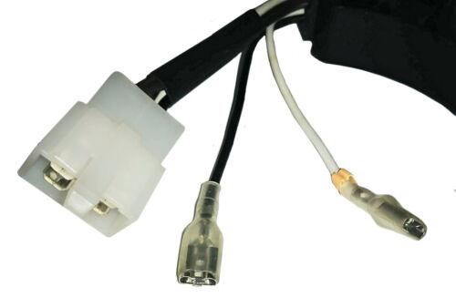 Eastern Tools AVR /& Carbon Brush for ETQ TG32P12 ETQ4000 A168FB Volt Regulator