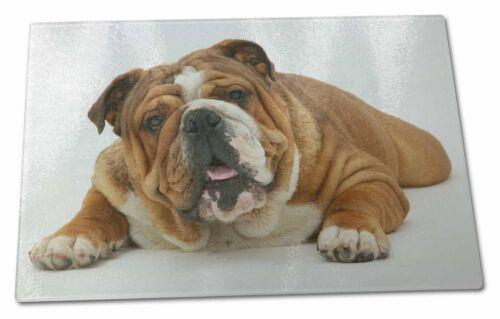 Beautiful Tan Bulldog X Large Glass Cutting Chopping Board AD-BU7GCBL