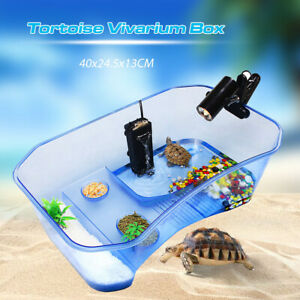 Reptile-Turtle-Tortoise-Vivarium-Box-Aquarium-Tank-with-Basking-Ramp-amp-Tree-UK