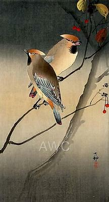 Japanese Reproduction Woodblock Print H by Ohara Koson on Parchment Paper.