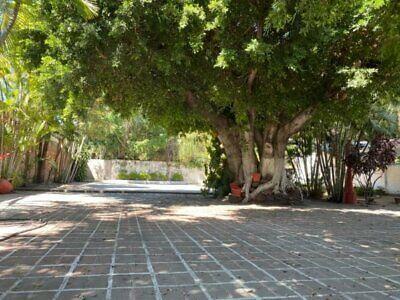 Hermoso Terreno en colonia Emiliano Zapata, Avenida Gabriel TEPEPA!!!