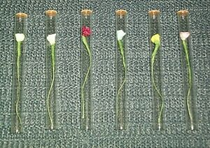 Love-Rose-4-034-Glass-Tube-With-Silk-Rose-Flower-Corked-One-End-Assorted-Colors
