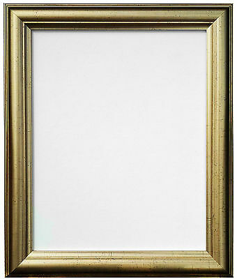 48 Gold Picture Photo Frame in Various Sizes