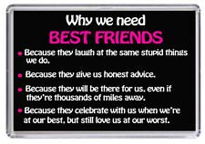 Why we need best Friends Fridge Magnet