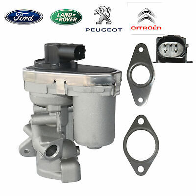 Dichtungssatz für AGR EGR Ventil Ford Fiat Peugeot Citroen 1618HQ 1480549 Neu