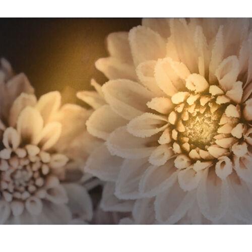 LED Wandbild beleuchtetes Bild Leuchtbild Leinwandbild Leinwandfoto KM 303728