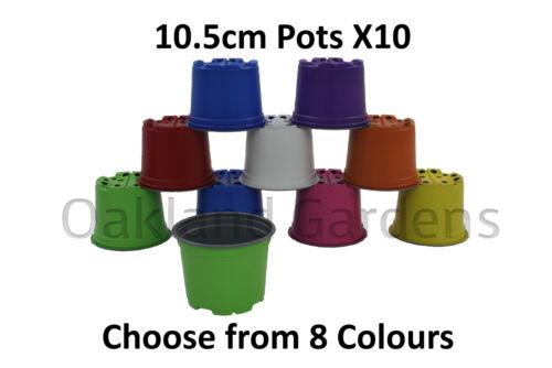 10 x 10.5cm Coloured Plastic Plant Pots Lightweight Colourful Colour Flower pot