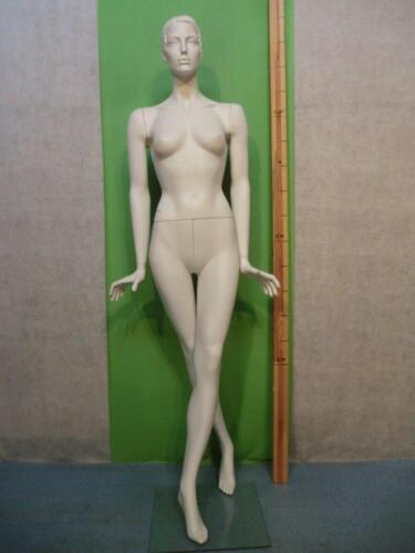 Mannequin Mannequin Doll Fashion Doll Female 6686