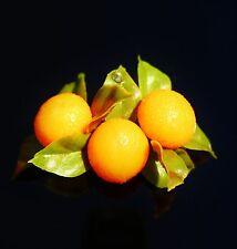 Oranges fruits soft plastic rhinestone  BROOCH