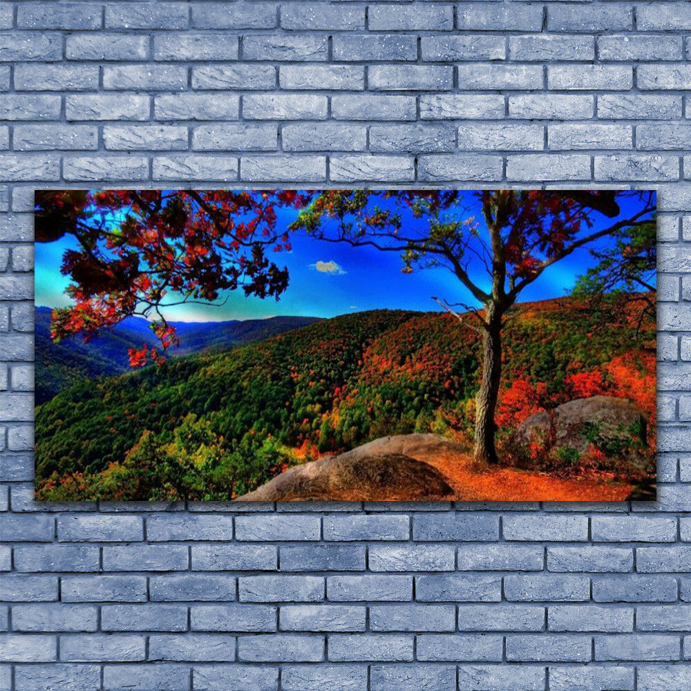 Glass print Wall art 140x70 Image Picture Mountain Forest Nature