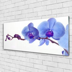 Glasbilder Wandbild Druck auf Glas 125x50 Blume Pflanzen