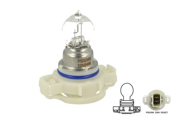 Una Lampada Alogena PSX24W 12V 24W PG20-7 Clear Compatibile Philips 12276 C1