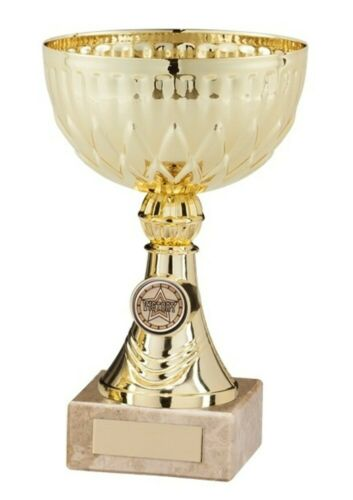 Carrera Gold Presentation Cups Achievement Trophies 4 sizes FREE Engraving