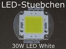 1x 30w High-Power LED Bianco Bianco