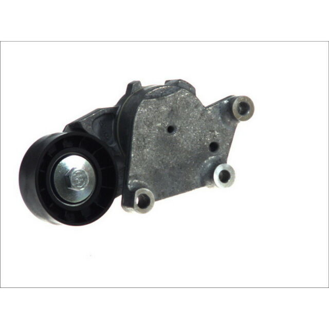 Courroies 534041210 pour FORD INA Spannarm