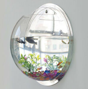 Image Is Loading New Wall Mounted Fish Tank Bowl Bubble Aquarium