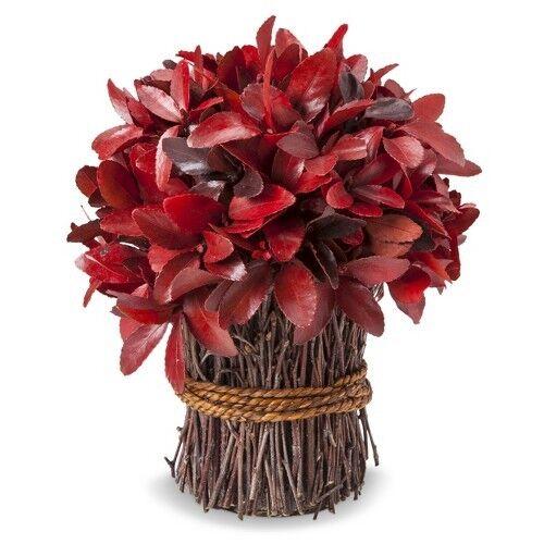 "Smith & Hawken® Fall Dried Red Bundle - 10"""