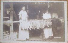 Cuba/Cuban Cigar 1915 AZO Realphoto Postcard: 'Stringing Tobacco In The Barn'