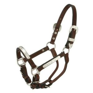Tough-1-Royal-King-Silver-Bar-Leather-Show-Halter-with-Lead-Dark-Oil
