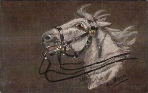 TUCK-Horses-Heads-by-Hilda-Walker-c1910-Postcard-9692
