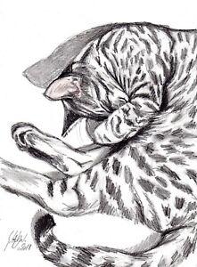 Et-ca-roupille-21x29cm-gatto-cat-katze-chat-S-GAUDOU-Drouot