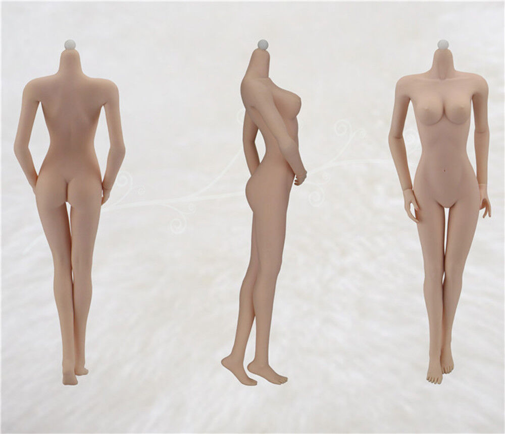 1 6 JIAOUDOL Female Flexible Steel Stainless Figure Body Body Body W 6 color Medium Bust 1 a7b14e