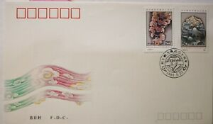 China-FDC-1991-J-176-40th-Anniversary-of-Peaceful-Liberation-of-Tibet