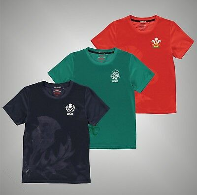 Welsh Rugby Large Print Crest Tshirt Tee Top Short Sleeve Crew White//Red Infant