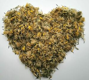 Krauterino 24-Arnica fiori chamissonis tutta - 50g