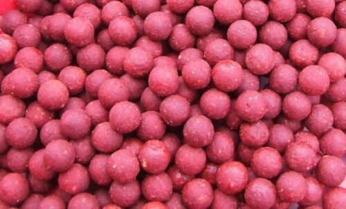Bloodworm Shelflife Fishmeal Boilies 18MM Carp Fishing All Pack Sizes