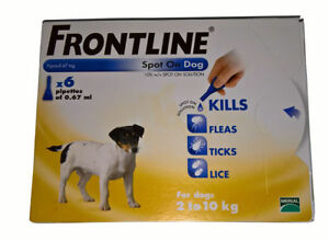 frontline for puppies. Stock Photo Frontline For Puppies