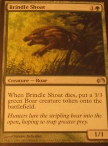 1x-Brindle-Shoat-HP-slight-scratches-Planechase-2012-EDH-Commander-Tokens