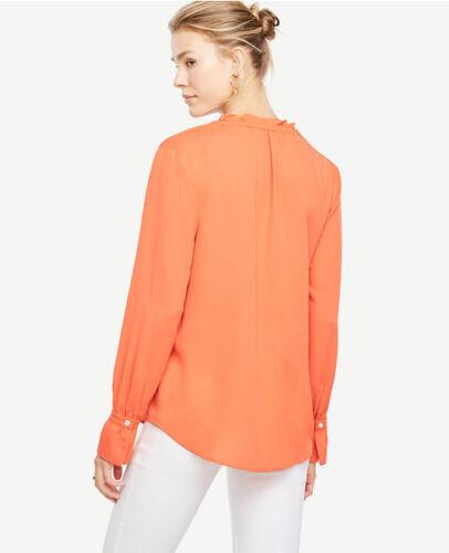 Piccola Arancione Pl Corallo 14p h Blaze Maglia 12p Taylor Nappa Ann BS50xO0