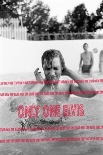 1956 ELVIS PRESLEYAudubon Drive MEMPHIS Photo SHIRTLESS in POOL  08