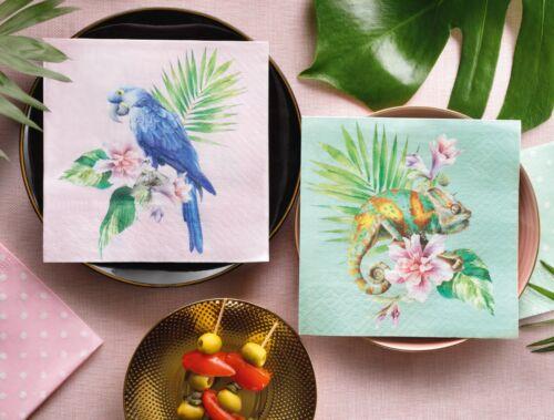 20 Papier Déjeuner Serviettes exotique perroquet Decoupage 33x33cm SDL123100