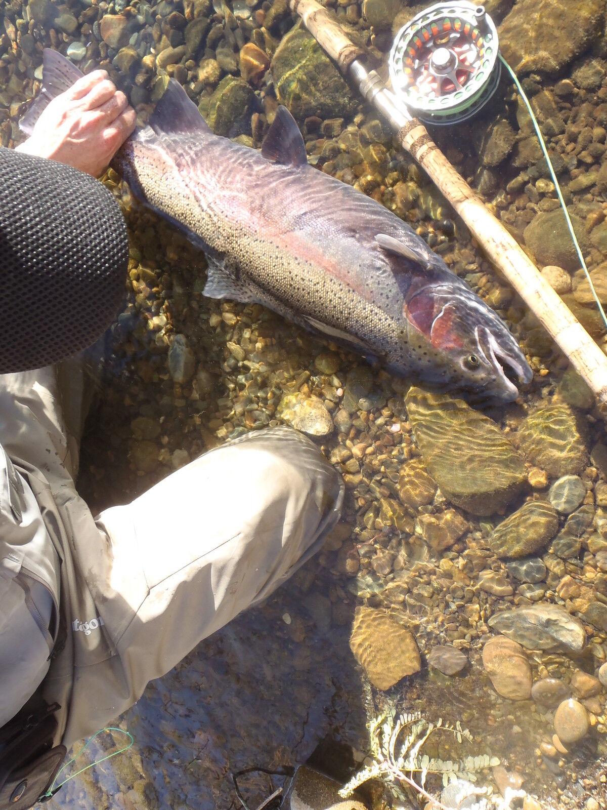 12 Irideus Horner's Pulaski New York Pink Worm Steelhead fly Fishing Flies River