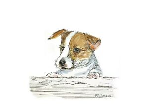 Print-of-original-ink-watercolour-Jack-Russell-dog-lover-collectible-Art-decor