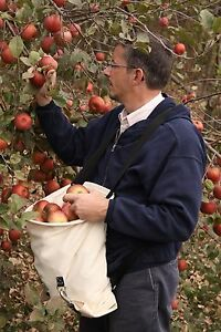 Agressif Fruits, Citrus, Apple Et Cueillette Sac Amish Made In Ohio Par E-z Outdoors-afficher Le Titre D'origine Officiel 2019