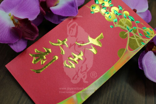 Money Envelope Chinese New Year Red Packet HongBao Lucky Money Pack of 10