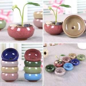 Mini Garden Succulent Ceramic Pot Planters Flowerpot Pottery Clay Bonsai Pots