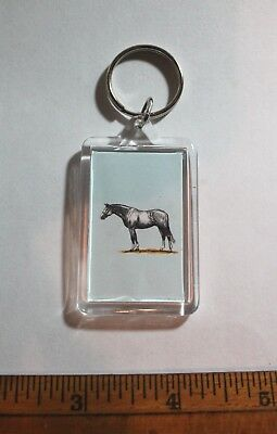 Details about  /Equine Key Ring Grey Warmblood Horse Print Acrylic Key Chain