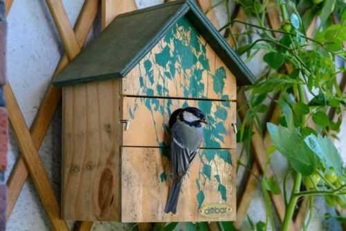 3 Einflugloch Größen dobar Nistkasten Camouflage-Design Nisthilfe Vogelhaus