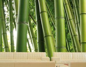 foto tapeten gr n bambus bl tter optik auf wand bilder deko ideen aufleber natur ebay. Black Bedroom Furniture Sets. Home Design Ideas