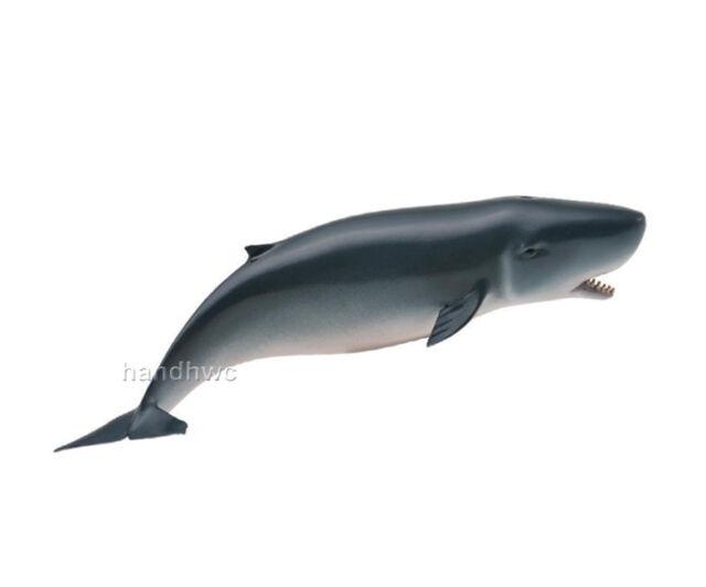 NIP AAA 12834 Young Orca Killer Whale Sealife Toy Model Figurine Replica
