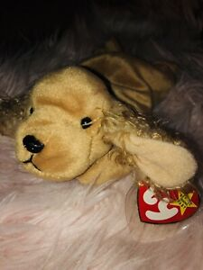14f25fb04ba TY Beanie Baby Spunky the Cocker Spaniel 1997 Rare and Retired with ...