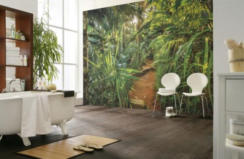 Wall Mural Photo Wallpaper 368x254cm Jungle feature wall Palms Rain forest