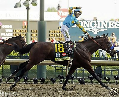AMERICAN PHAROAH 2015 141ST KENTUCKY DERBY WINNER HORSE RACE RACING 8X10 PHOTO